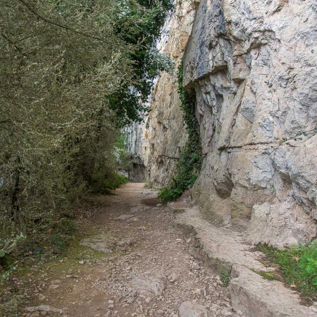 Lot Chemin Halage 5cjd Roadtrip