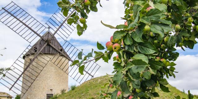Moulin à Castelnau-Montratier