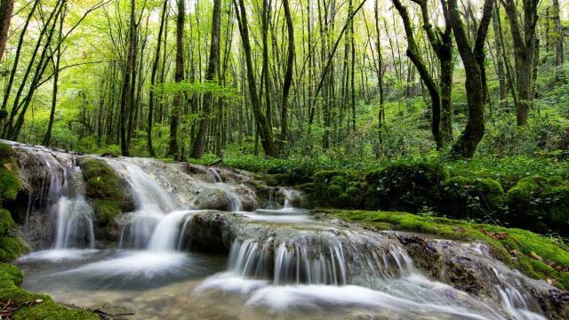 Ruisseau Du Caillon