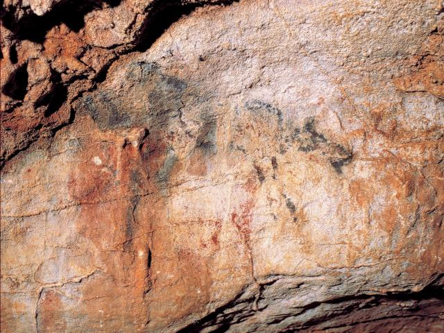 Représentation d'un élan - Grotte des Merveilles