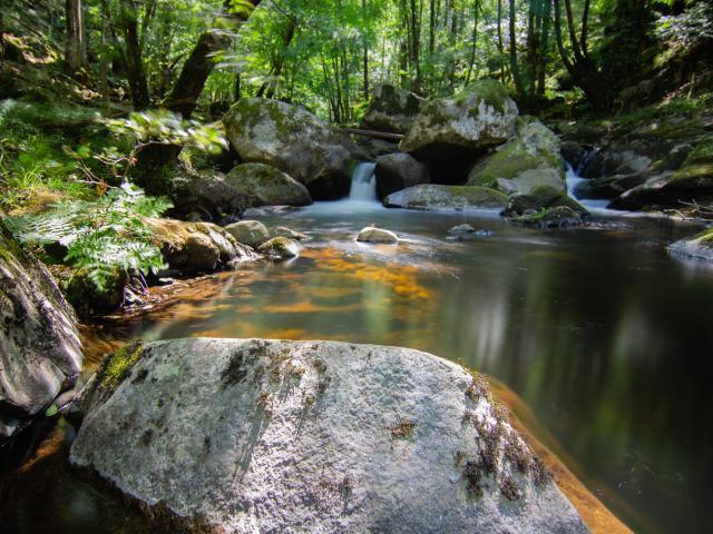 Ruisseau du Cayla