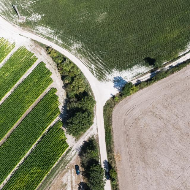Vue aérienne du paysage en Quercy Blanc