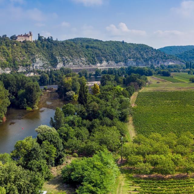 Chateau de Mercues et vallée du Lot