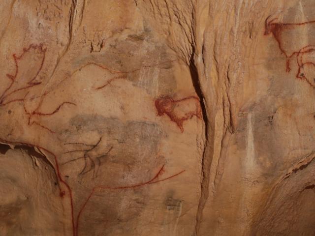 Figures animales sur les parois de la Grotte de Cougnac