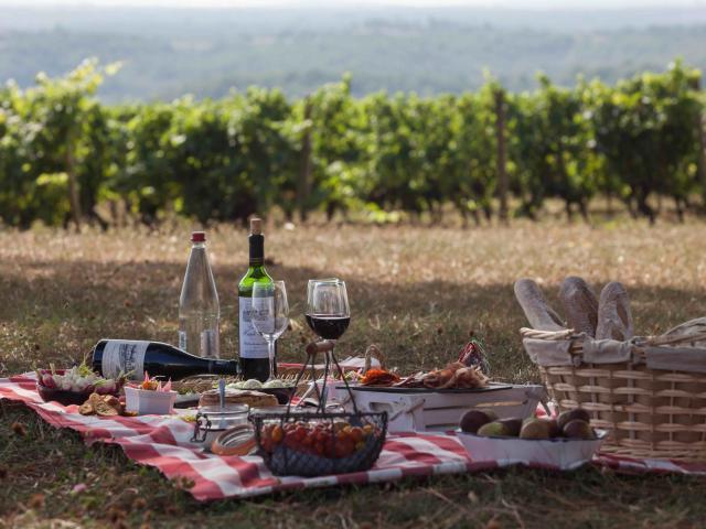 Pique-nique dans les vignes