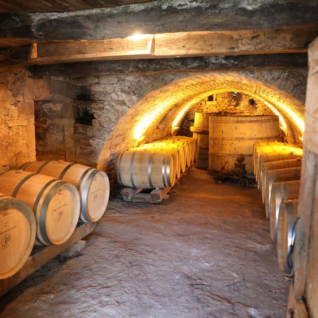Chai de vinification du Domaine de Lagarde