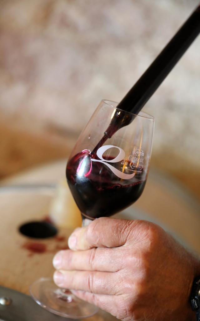 Dégustation de vin Coteaux du Quercy