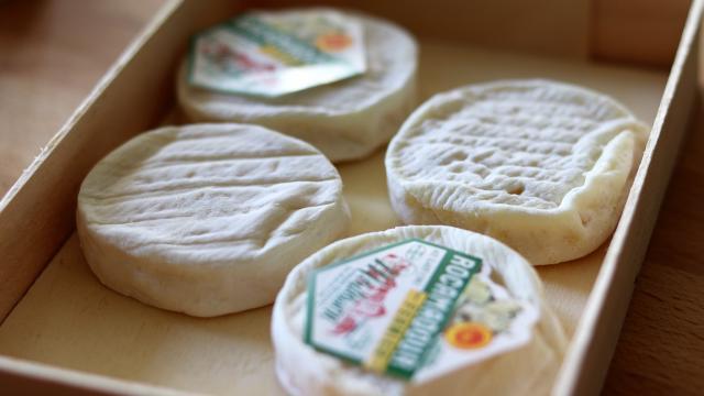Fromage De Rocamadour