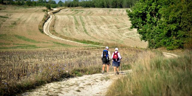 Sur le chemin de St Jacques en Quercy Blanc