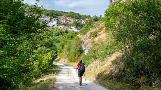 Sur le GR6 - vallée de l'Alzou