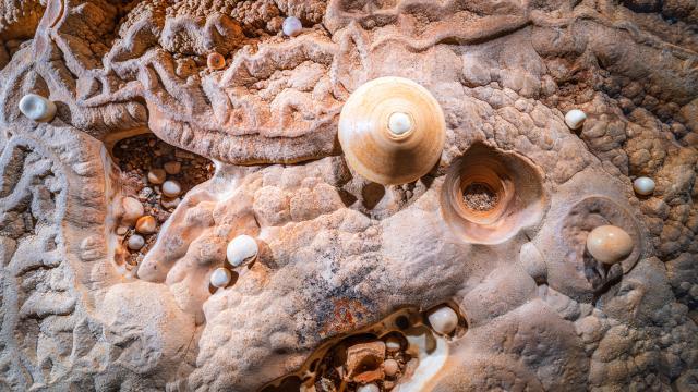 Perles et toupie - Grotte du Pech Merle