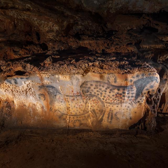 Chevaux ponctués - vue très large - Grotte du Pech Merle