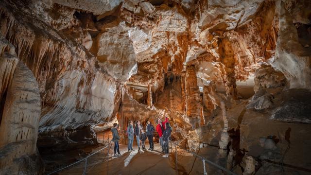 Galerie de l'Ours - vue large - Grotte du Pech Merle