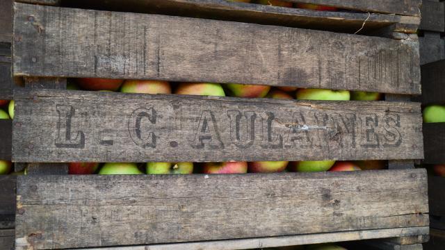 Caisse de pommes en bois