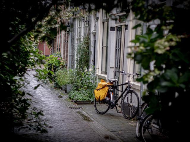 balade à vélo en ville