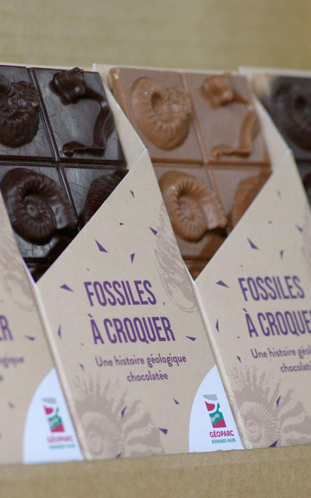 Tablettes de chocolat fossiles Credit Pnrnm