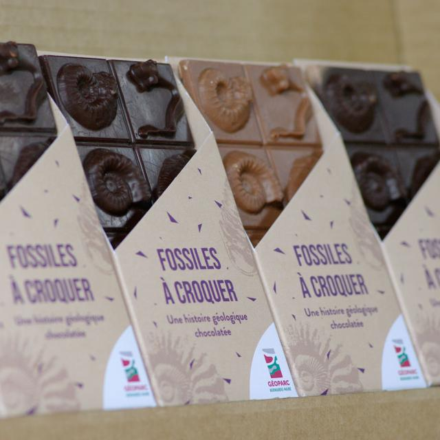 Tablettes de chocolat fossiles Credit Pnrnm