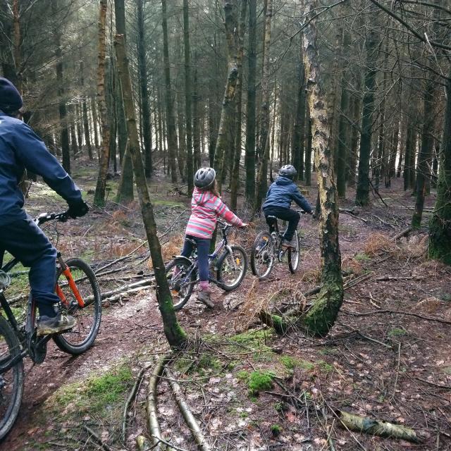 Vtt En Famille Forêt Petit