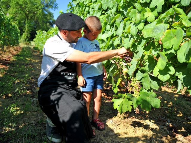 Vigneron Et Enfant Patrice Thebault