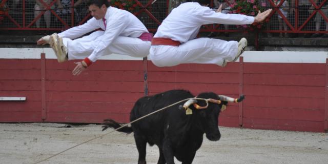 course-saut2-d-dumont.jpg