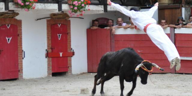 course-saut3-d-dumont.jpg