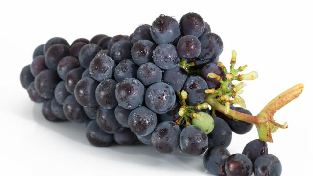 grappe-raisin-rouge-stevepb-pixabay.jpg