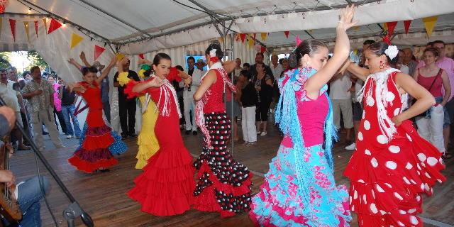 novillada-danses-vivement-5h.jpg