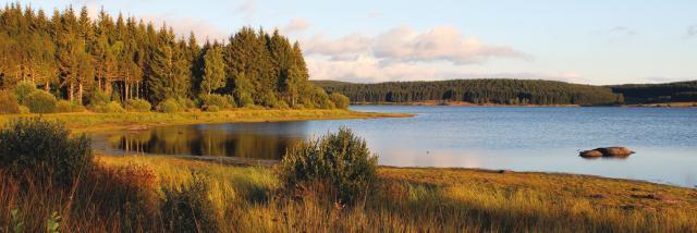 Lac de Charpal - Margeride en Lozère