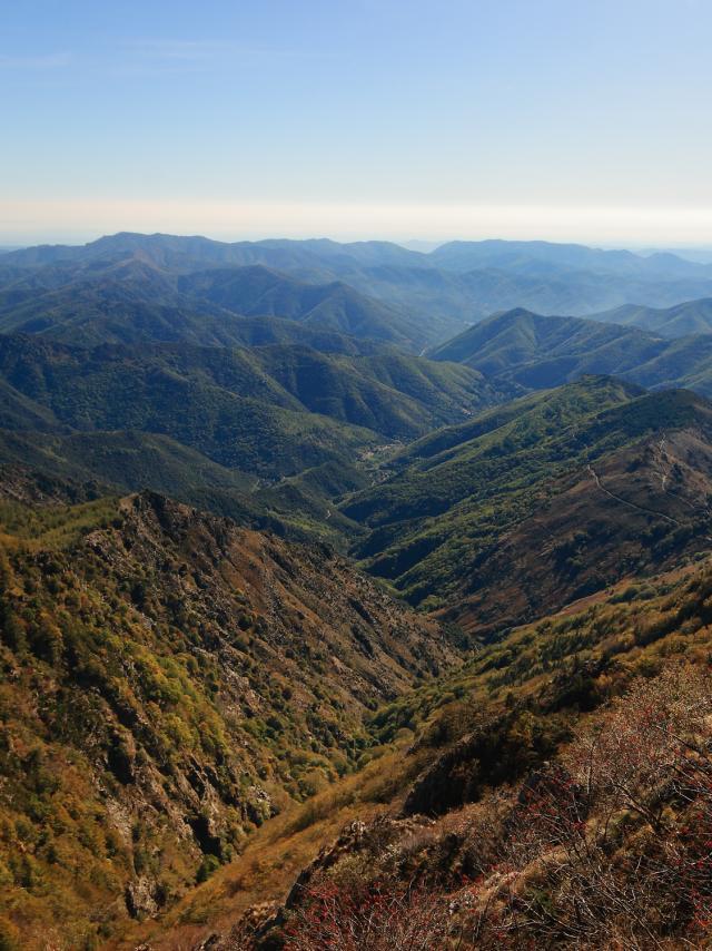 Mt Aigoual