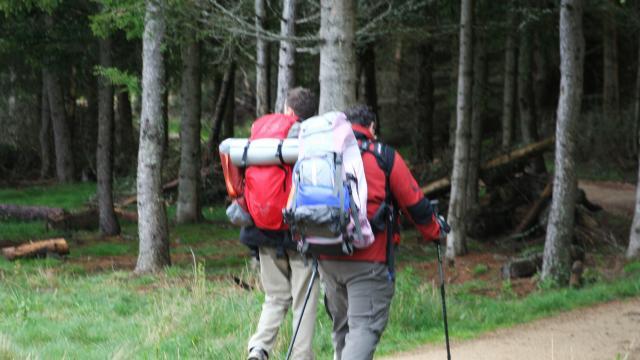 Randonnée en Margeride à proximité du Lac de Charpal