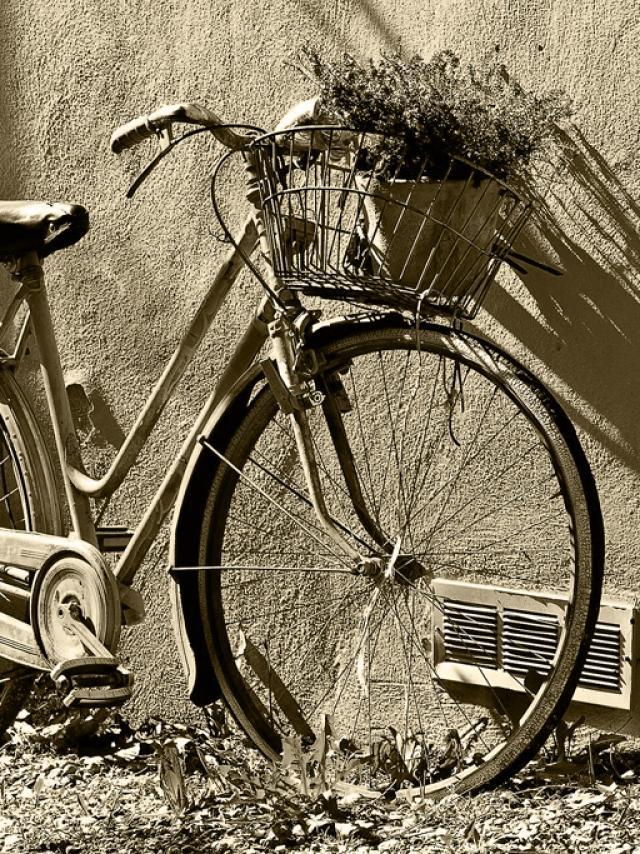 Bike©dan Fador Pixabay