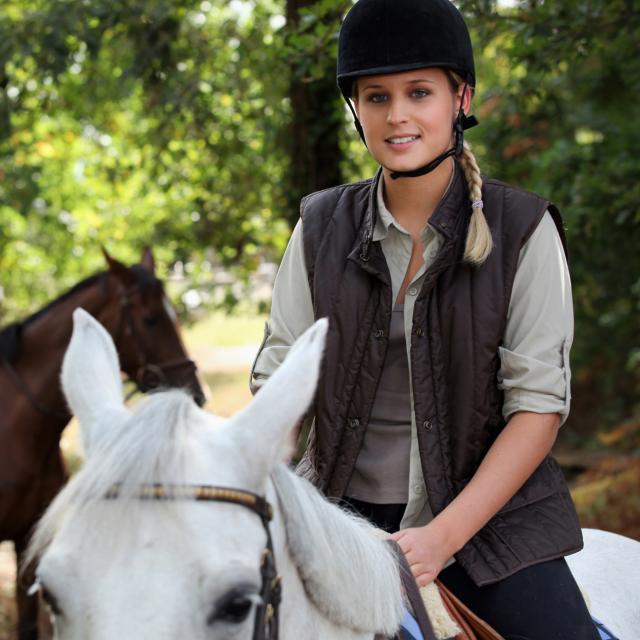 Equitation Cheval 1©phovoir