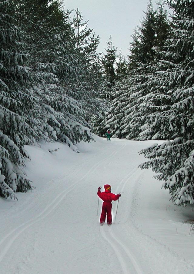 Hiver Ski 3©d.rixte
