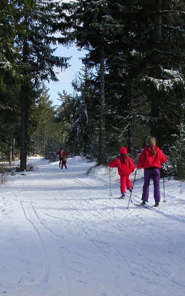 Hiver Ski 5©d.rixte