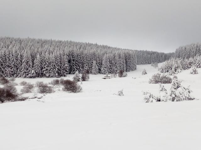 Lac Charpal Neige 1 21(1)©a.manceau