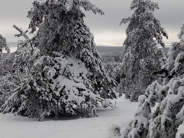 lac-charpal-neige-1-213a-manceau.jpg