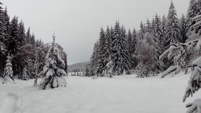Lac Charpal Neige 1 21(6)©a.manceau