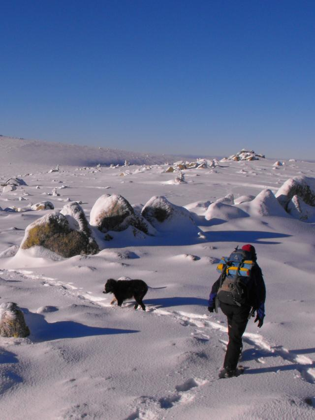 Mont Lozere Neige Chiloe 1©c.molinié