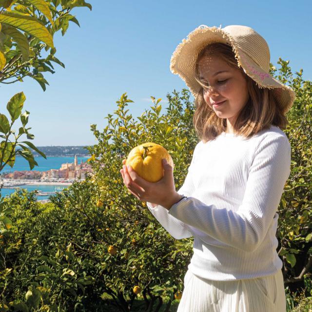 citron-menton-crt-cote-d-azur-france-frederic-gibrat.jpg