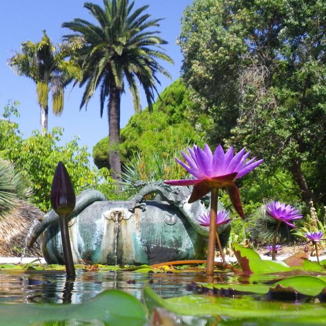 Jardin Maria Serena Bassin