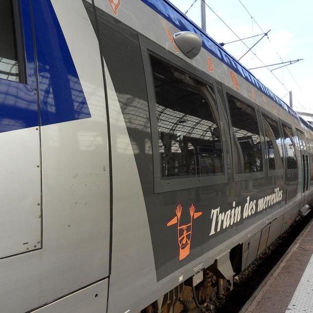 Gare De Nice Train Des Merveilles