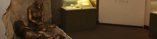 Menton Musee Prehistoire Interieur