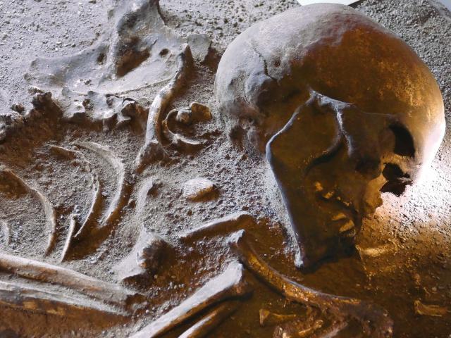 Prehistorique Musee Des Merveilles