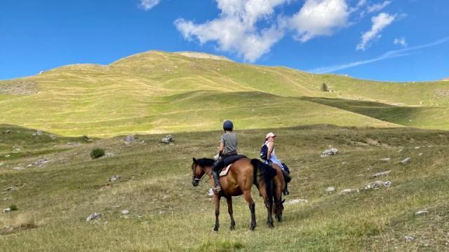Randonnee Equestre Horse Venture