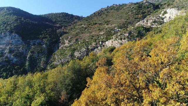 Randonnée Mont Gros