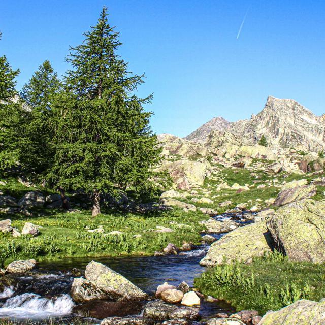 tende-montagne-lac-vincent-jacques-dronederegard.jpg
