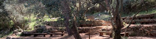 Forêt Grima à Beausoleil