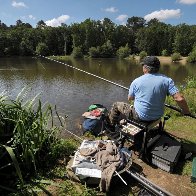 Lac de pêche - Base de loisirs