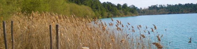 Balade Lac Arjuzanx