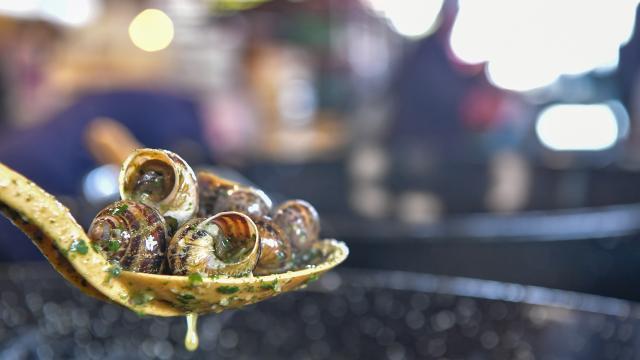 Escargots - Marché Saint Roch
